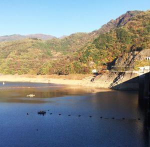 草木ダム山側の写真。